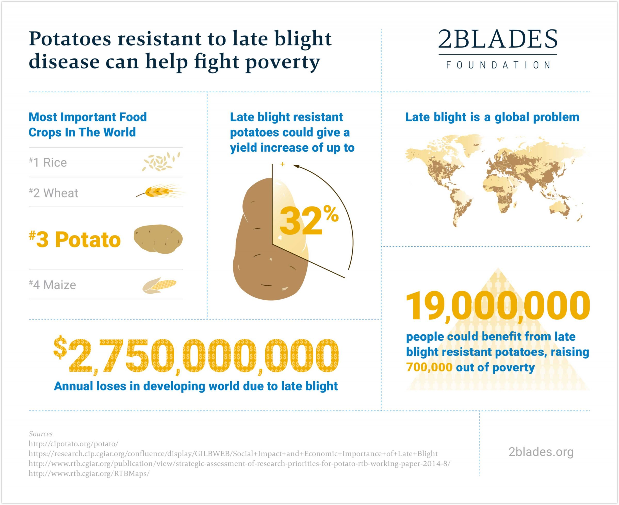 Potato blight infographic