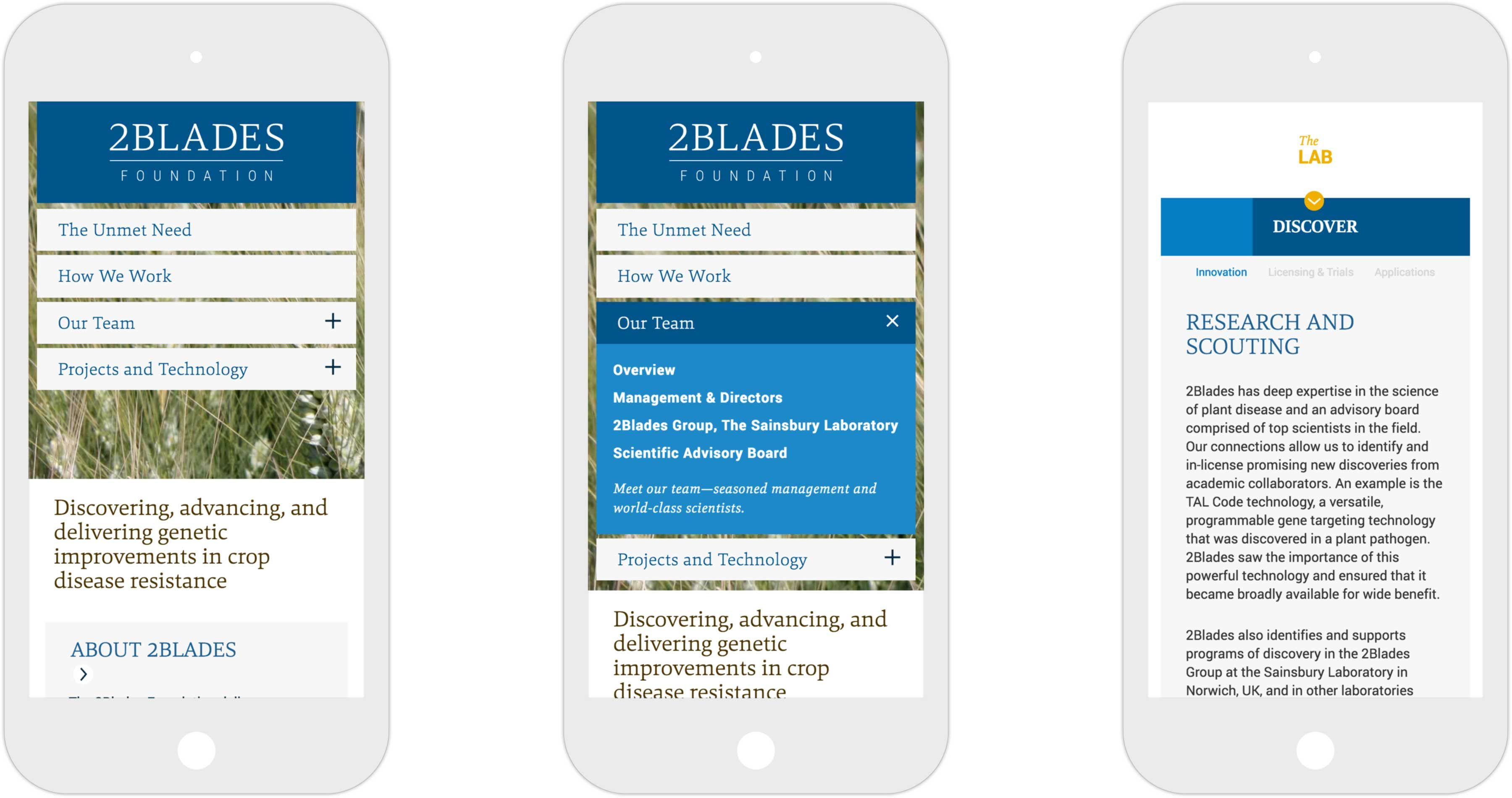 Three views of 2Blades responsive website on iPhone