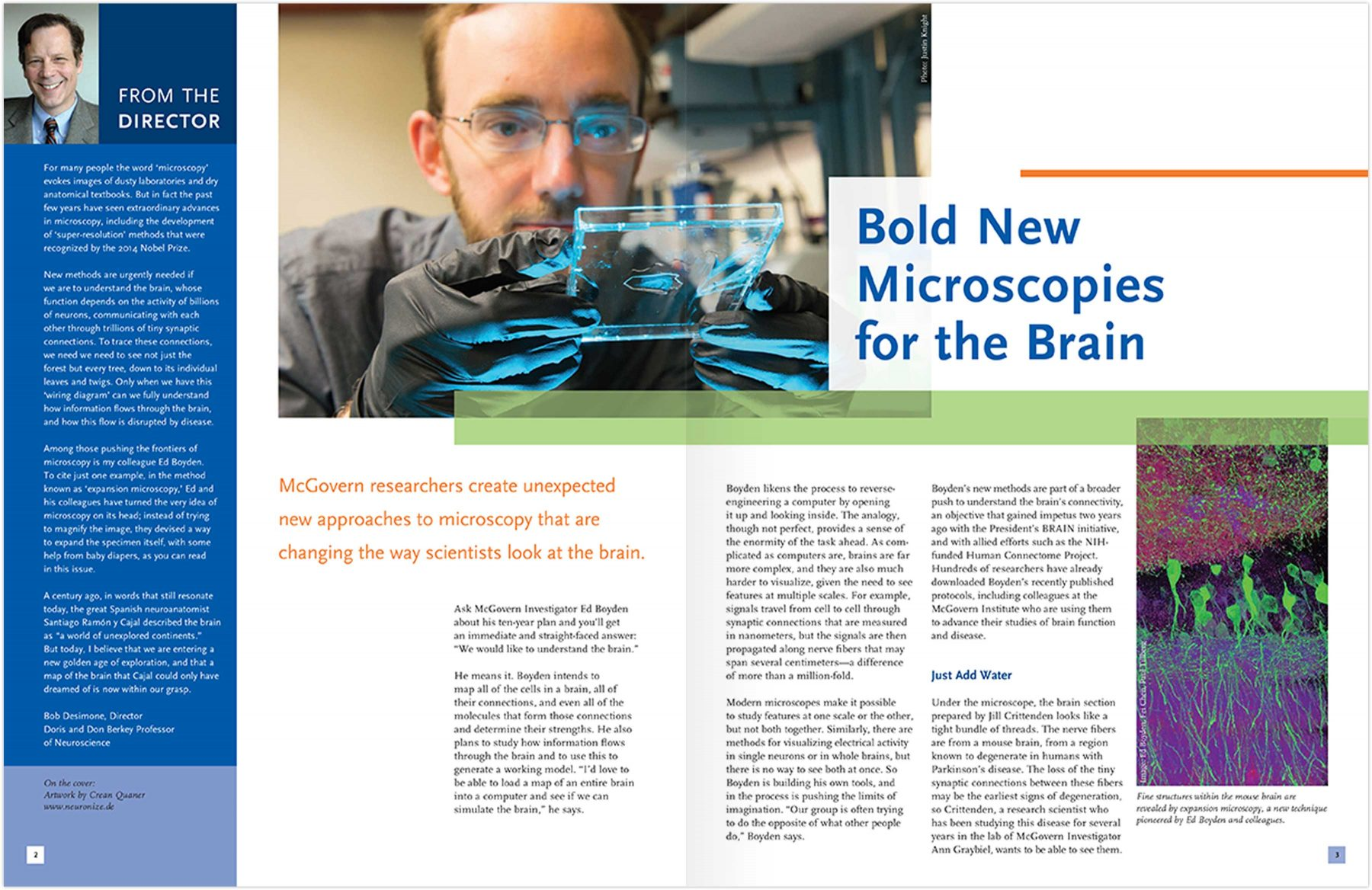 Newsletter: Bold New Microscopies for the Brain